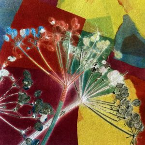 gillian cooper terrific transfer printing - abstract colours with cow parsley