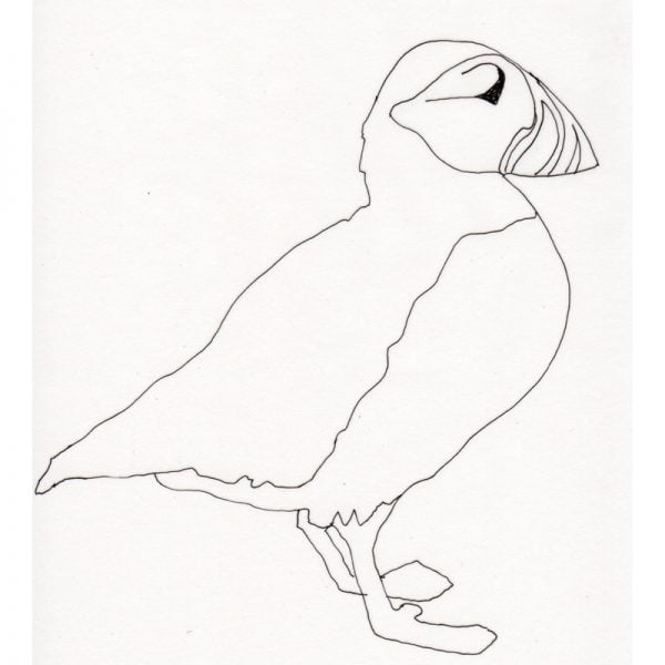puffin outline
